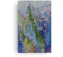 Web Among the Thorns Canvas Print