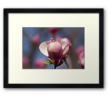 Have Yourself a Cup Framed Print
