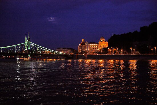 Liberty Bridge. The Danube River in Budapest at night. Number 1 by Anatoly Lerner
