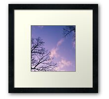 Tranquil Twilight of the Trees Framed Print