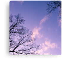 Tranquil Twilight of the Trees Canvas Print