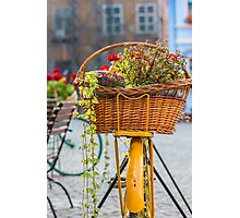 Flower Basket Photographic Print