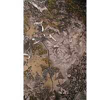 experimental silver gel pen Photographic Print