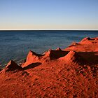 Shark Bay Edgy by Shari Mattox