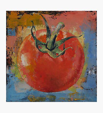 Vine Tomato Photographic Print