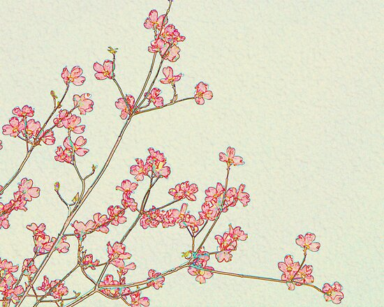 Dogwood Blossoms by Sharon Woerner