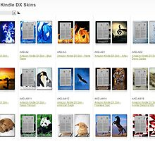 Buy colourful & attractive Amazon Kindle Fire skin online by bbrij07h
