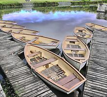 Boats for Hire ( 1 ) by Larry Lingard-Davis