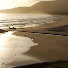 Good morning, sunrise South West Rocks by Catherine Davis