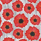 poppy flowers on gray bg by demonique
