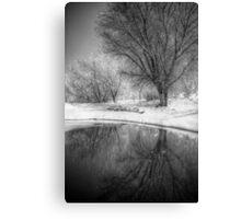 Pond-er Canvas Print