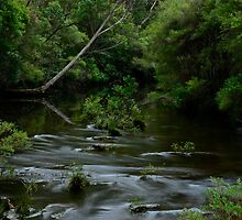 Kangaroo River. 7-3-12. by Julie  White