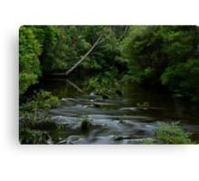 Kangaroo River. 7-3-12. Canvas Print