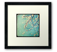 White Spring Framed Print