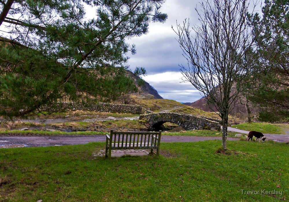 A Seat with a View by Trevor Kersley