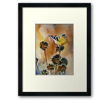 Bright Spot in Winter Framed Print