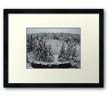 Manistee River Snow Globe Framed Print
