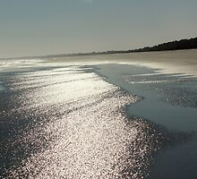 Kiawah Beach in the Spring by Rosanne Jordan