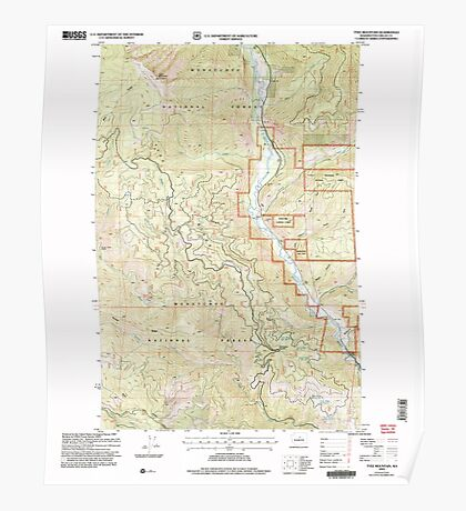 USGS Topo Map Washington State WA Tyee Mountain 244394 2004 24000 Poster