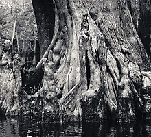 Swamp People by Jonicool