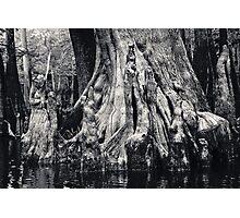 Swamp People Photographic Print