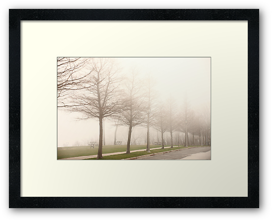 Foggy Sidewalk Scene by Thomas Murphy