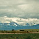 Montana Means Mountains - 10 by Bryan D. Spellman