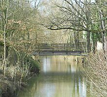 My Local Monet's Bridge...untouched! by Marilyn Grimble