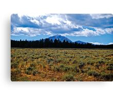 Mountains and Sage Canvas Print