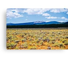 Mountains and Sage 2 Canvas Print