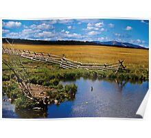 Fence, Pond Poster