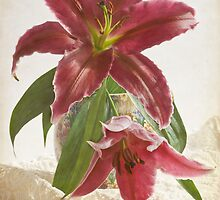 Lilies in Chintz Jug  by DIANE  FIFIELD