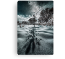 Long Shadow of Winter Canvas Print