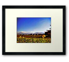 nature at it's best Framed Print