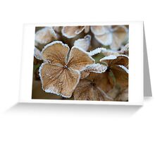The Touch of Winter Greeting Card
