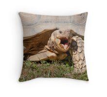 tortoise at zoo Throw Pillow