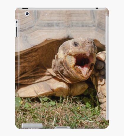 tortoise at zoo iPad Case/Skin