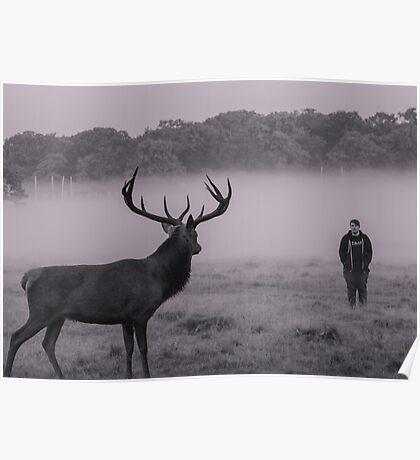 Deer/man standoff Poster