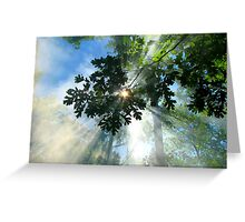 The Forest Star Greeting Card
