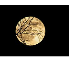 Shadows on the Moon Photographic Print
