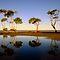 Avatar Challenge: Your Best Aussie Scenic