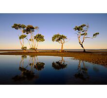 Select Your Partners Photographic Print