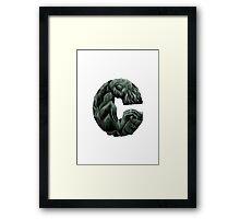 Geek letter C Framed Print