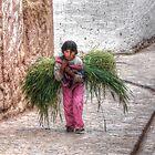 All In A Days Work - Chinchero, Peru by Edith Reynolds
