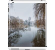 Reflections of Winter Willows iPad Case/Skin