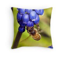 Hello Spring Throw Pillow