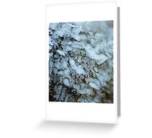Frilly Frost Fans Greeting Card