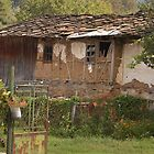 Old House in Bulgaria by Diana  Kaiani
