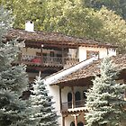 Bulgarian Monastery by Diana  Kaiani