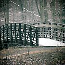 Winter Bridge by Veronica Schultz